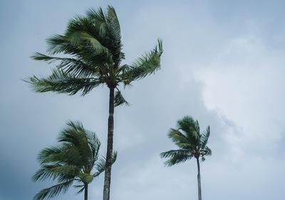 How Businesses in the Greater Daytona Region Can Prepare for Hurricane Season